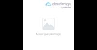 brandimage logo adornmonde 200x104
